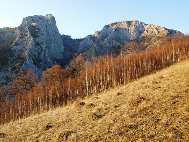 Scărița Belioara / Sursa foto: cu amabilitatea d-lui Mihai Constantinescu