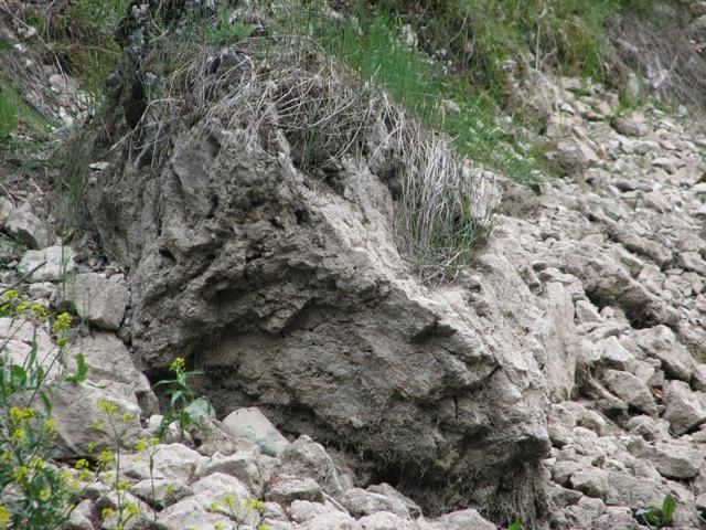 Chip de piatră, la Iezerul Ighiel / Sursă foto: Florian-Rareș Tileagă
