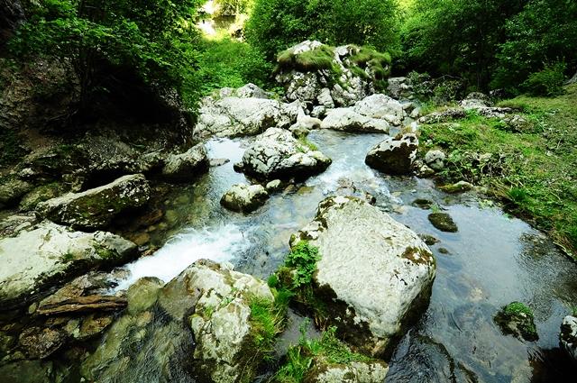 Râul care iese din peșteră / Sursa foto: Florian-Rareș Tileagă