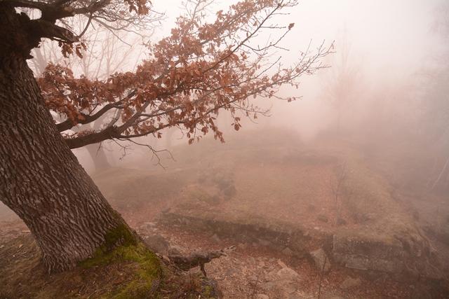 Ceață, densitate, istorie / Sursa foto: Florian-Rareș Tileagă
